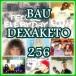 Bau Dexaketo 256