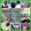Bau Dexaketo 260