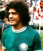 Cesar Maluco - Palmeiras