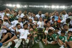 Palmeiras Campeão Copa do Brasil 2015