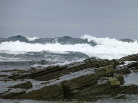 Wello kuva aalloista
