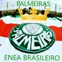 Palmeiras Enea Brasileiro 2016