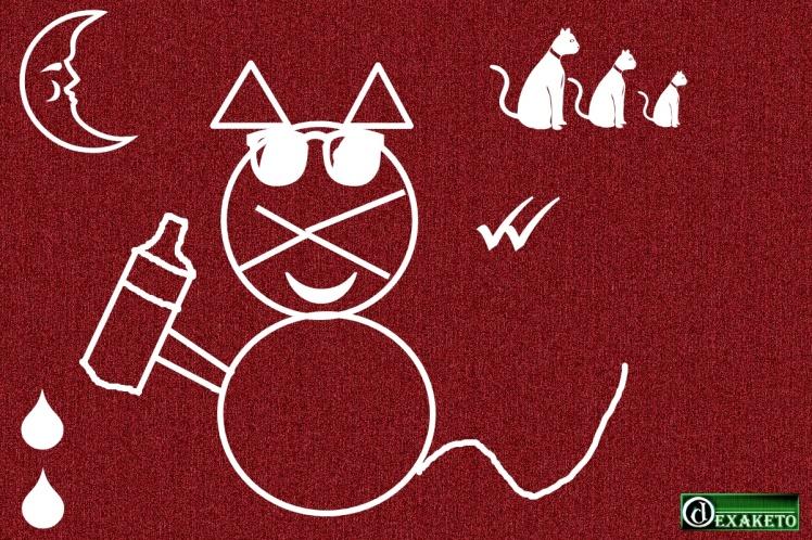 gato-vinho-dexaketo