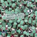 Obrigado, Palmeiras! Por Chapecoense
