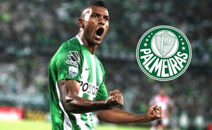 Borja no Palmeiras