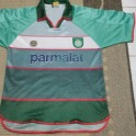 Palmeiras 2000