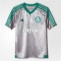 Palmeiras 2015 - Cinza