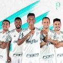 Palmeiras 2017